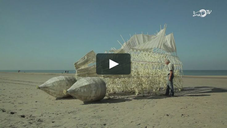 Directed and Produced by Salazar for Red Bull Media House  To learn more about Theo and his beasts  www.strandbeest.com  Music: Edo Van Breemen  Editor: Jason…