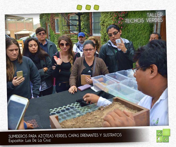 M s de 1000 ideas sobre azoteas verdes en pinterest for Curso de diseno de interiores pdf