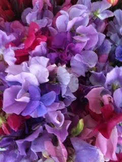 Las Lindas Flores: Flores Primavera