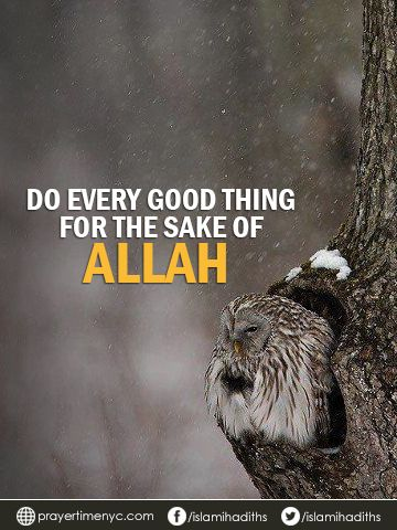 Do every good thing for the sake of #Allah. #GoodReads #advice #WordOfTheDay #quotes #islamicquotes #muslim #islam #instaquotes #muslim