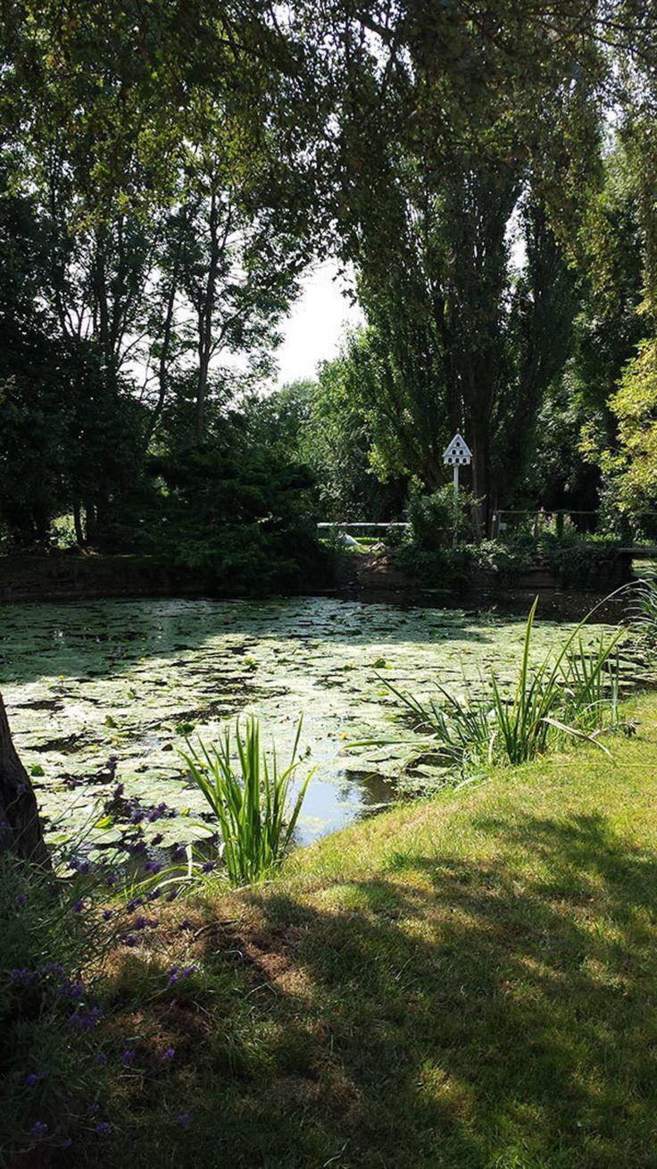 Cotes Mill – Mill Pond