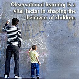 Understanding Observational Learning With Examples