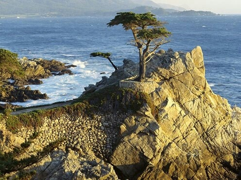 Best California Beaches Images On Pinterest State Parks - 7 unforgettable backdrops on californias 17 mile drive