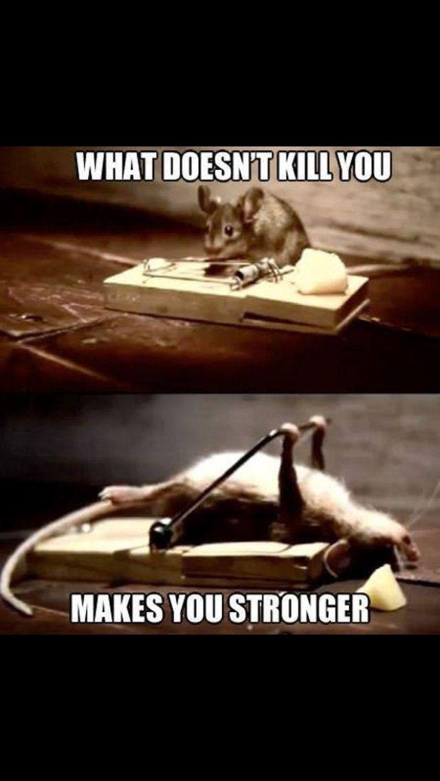 То что тебя не убивает, делает сильнее