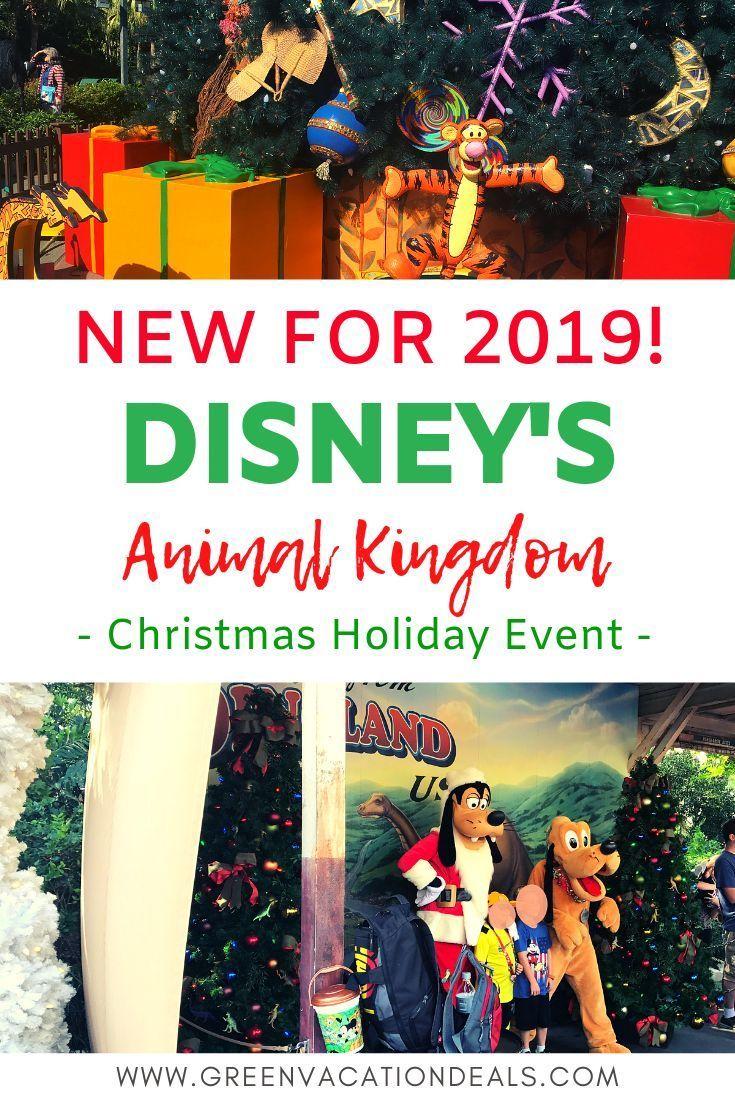 Christmas Vacation Deals 2019 New 2019 Animal Kingdom Christmas Holiday Event | Animal Kingdom