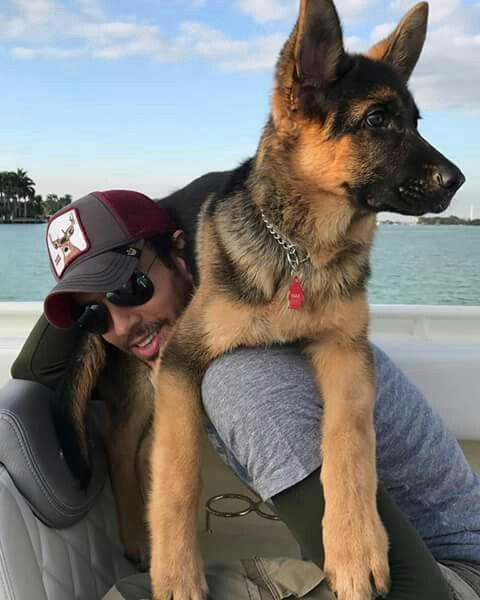 Enrique Iglesias and his dog Max