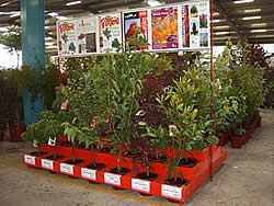 Fleming's Nurseries - Find a reseller