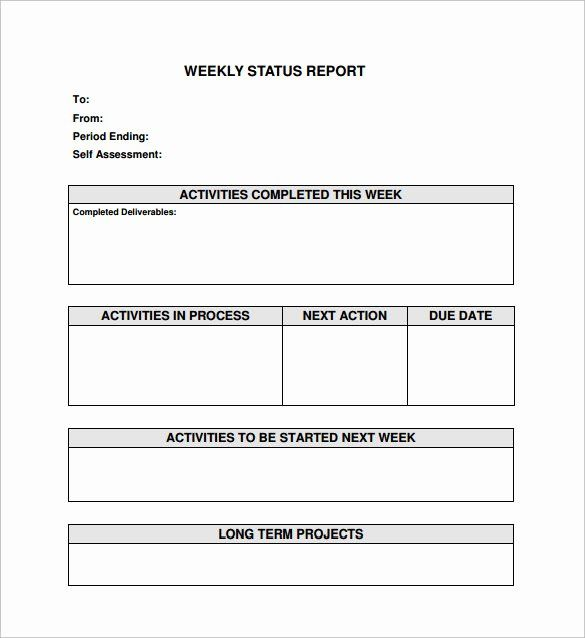 Weekly Progress Report Template In 2020 With Images Progress