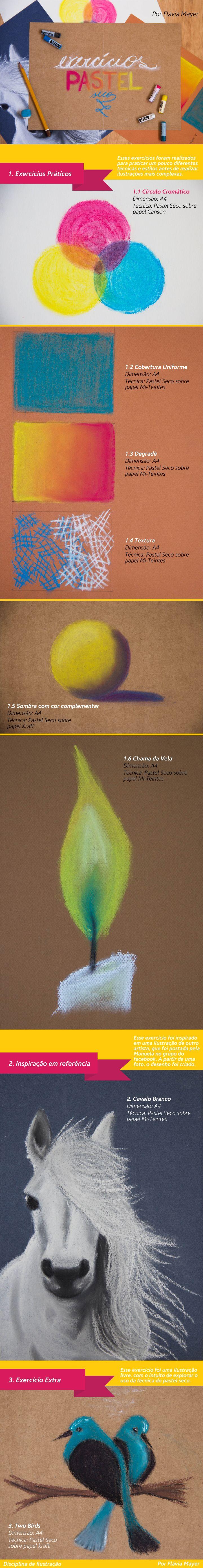 Exercícios de Pastel Seco da Disciplina de Ilustração - Design Gráfico - UFPR - Professora Carol Calomeno