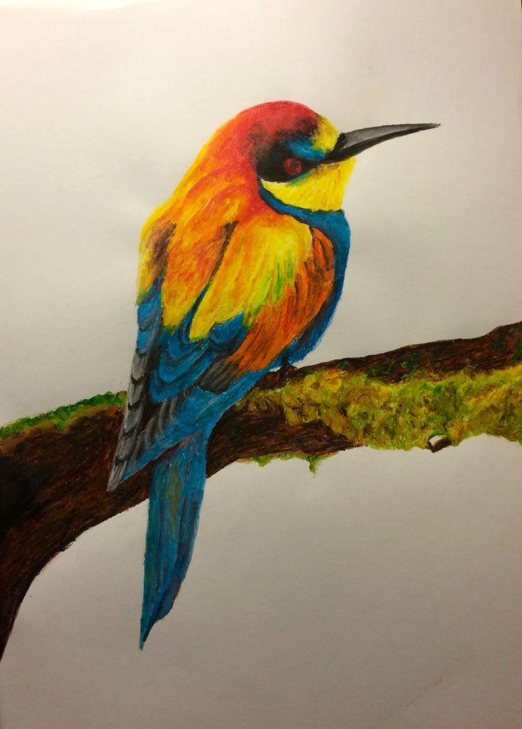 Bird on tree, watercolor pencils - Andrea Meyerholz