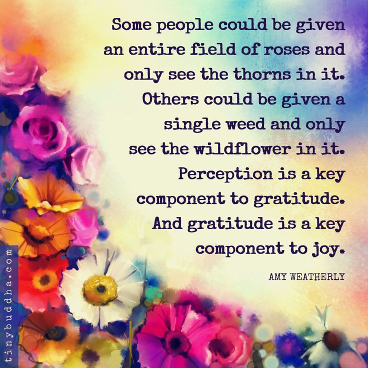 Gratitude Is a Key Component to Joy – L