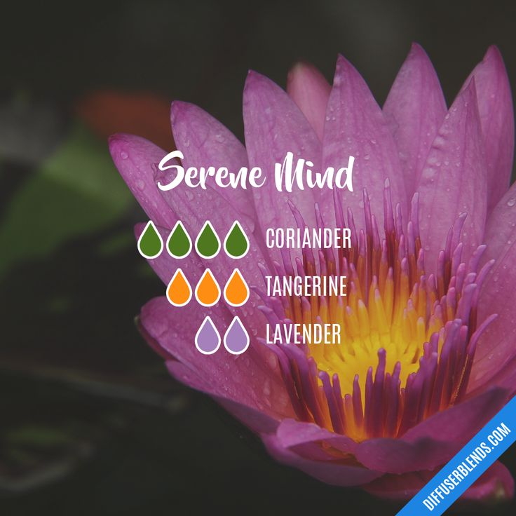 Serene Mind - Essential Oil Diffuser Blend