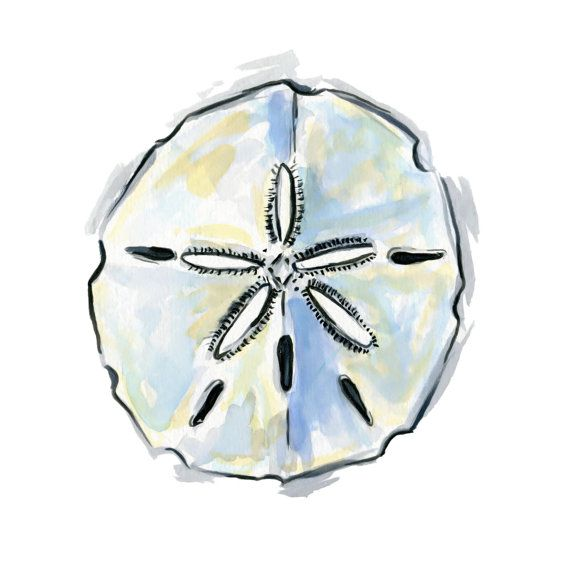Sand Dollar Print Sand Dollar Art Shell Art Beach by HippieHoppy