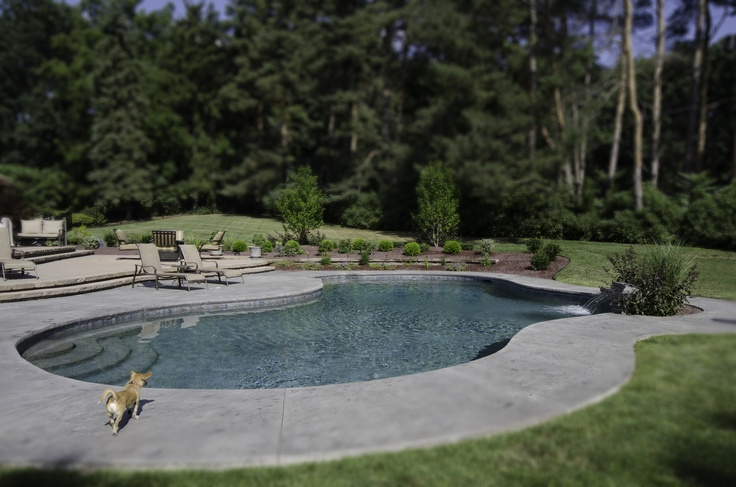 18 best perrino patio pool and backyard design images on for Pool design rochester ny