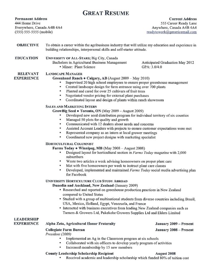 The  Best Good Resume Examples Ideas On   Good Resume