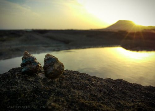 """Romantic Shells' Sunset ""  Matteo Venos Petrini ©  Canary Island Sum.2015"