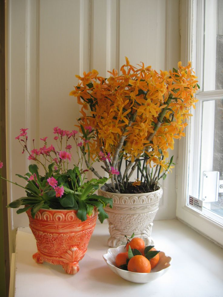 For Easter it could be nice to bring in some flowers and colorful fruits and flower pots to your home!