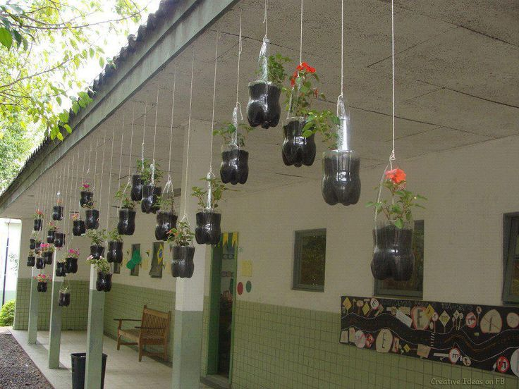 Create A Hanging Garden By Recycling Your Pet Bottles