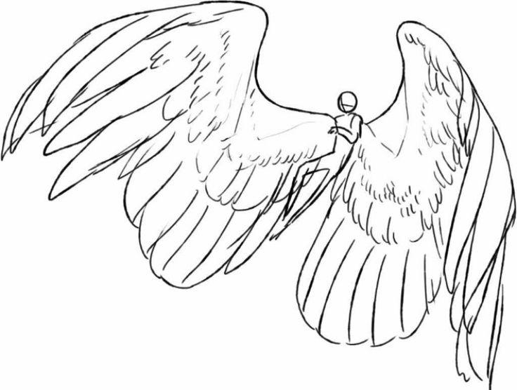 Lo que no se debe hacer cuando dibujas alas
