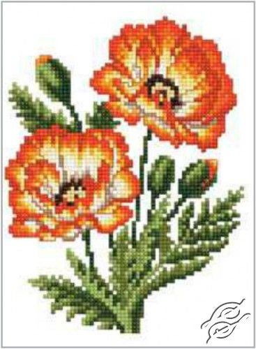 Poppies - Cross Stitch Kits by RTO - C187