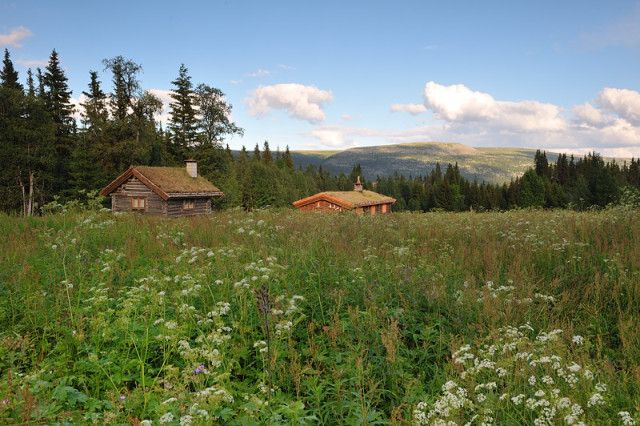 Fregnsetra, Trysil, Norway. This is where my familys´ cabin is. Photo by Trygve Opseth