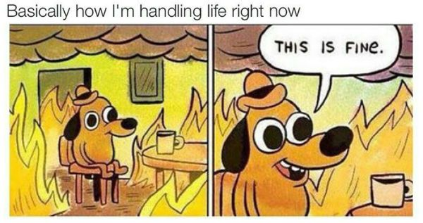 life on fire meme - Google Search