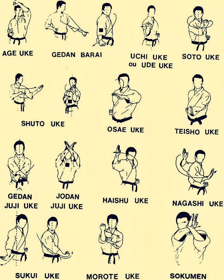 Kung Fu Wing Chun Tai Chi Swords — Learn these movements to keep healthy… The...