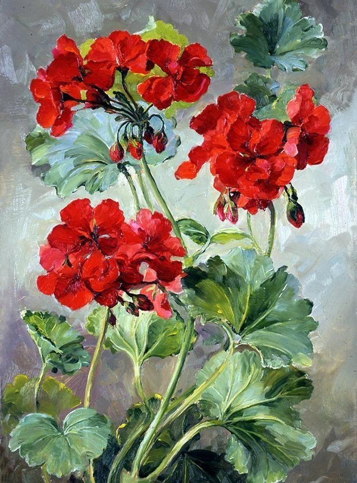 Geranium by Nina Maslova
