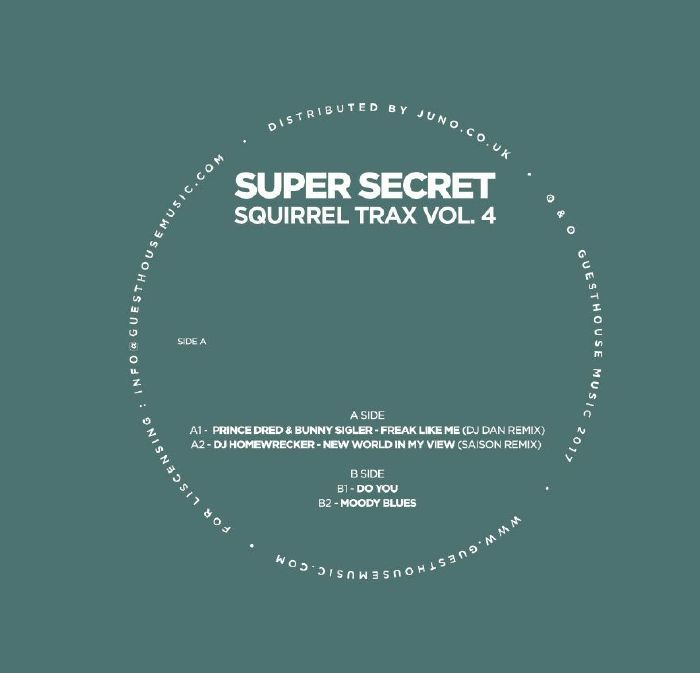 Prince Dred | Bunny Sigler | DJ Homewrecker | DJ Mes | Rescue - Super Secret Squirrel Trax Vol 4 (Guesthouse) #music #vinyl #musiconvinyl #soundshelter #recordstore #vinylrecords #dj #House