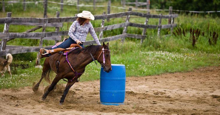 Películas sobre jinetas de rodeo con barriles. El rodeo con barriles es un deporte en el cual un caballo y su jinete galopan en un patrón en forma de hoja de trébol alrededor de tres barriles puestos en triángulo. En el circuito del rodeo, sólo las mujeres compiten en las carreras con barriles, mientras que los hombres y mujeres compiten juntos en exhibiciones y competencias con barriles. ...
