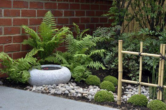 Japanese Style Garden | Fern Fanatic | Pinterest | Gardens, Ferns