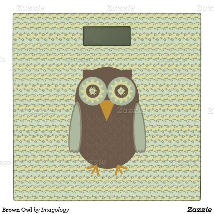 Brown Owl Bathroom Scale
