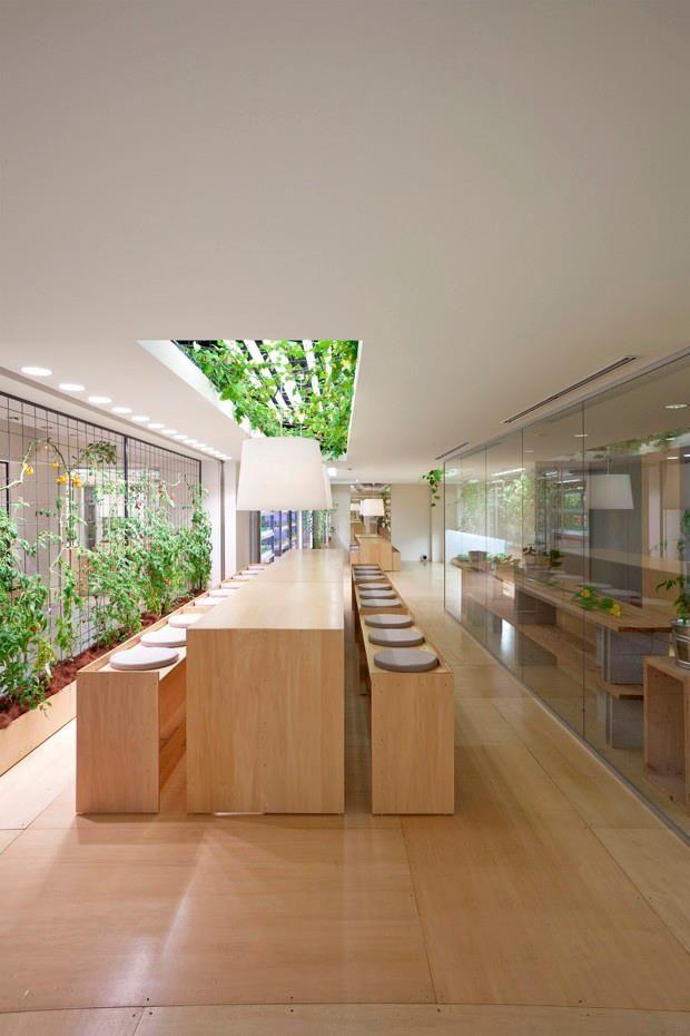 arsitektur pertanian ramah lingkungan pasona jepang 10