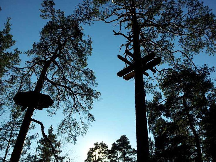 Ensimmäiset tasanteet on saatu puihin.