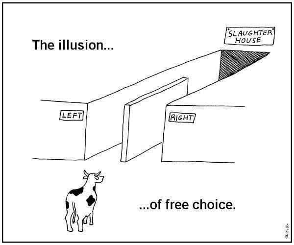 The illusion of choice, yielding the same result. Yes you are the Cow (Sheep) and the Government is the illusion.