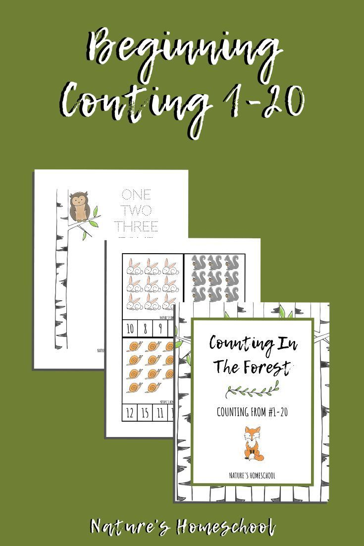 Counting In Nature From 120 Homeschool Printables for