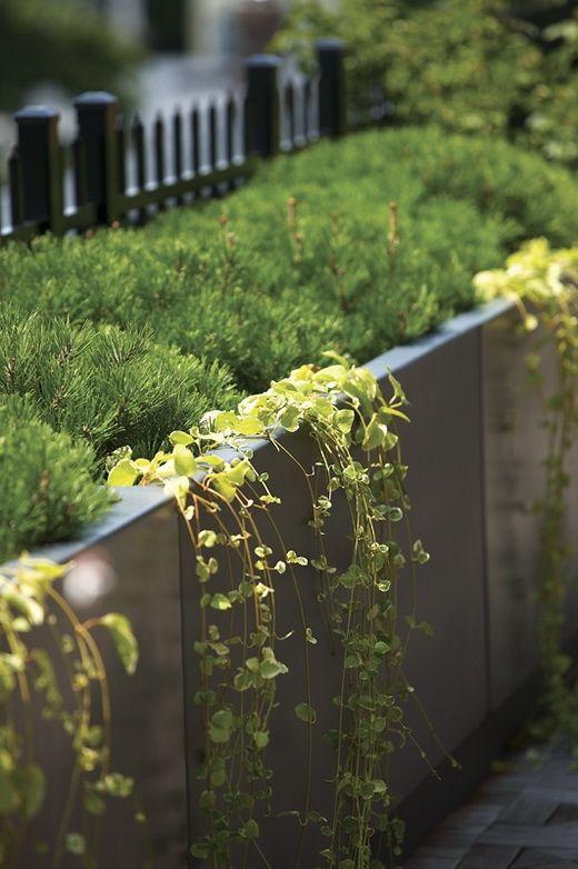 metal planters