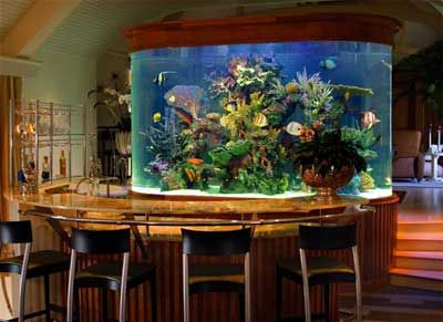 round fish tanks - Google Search