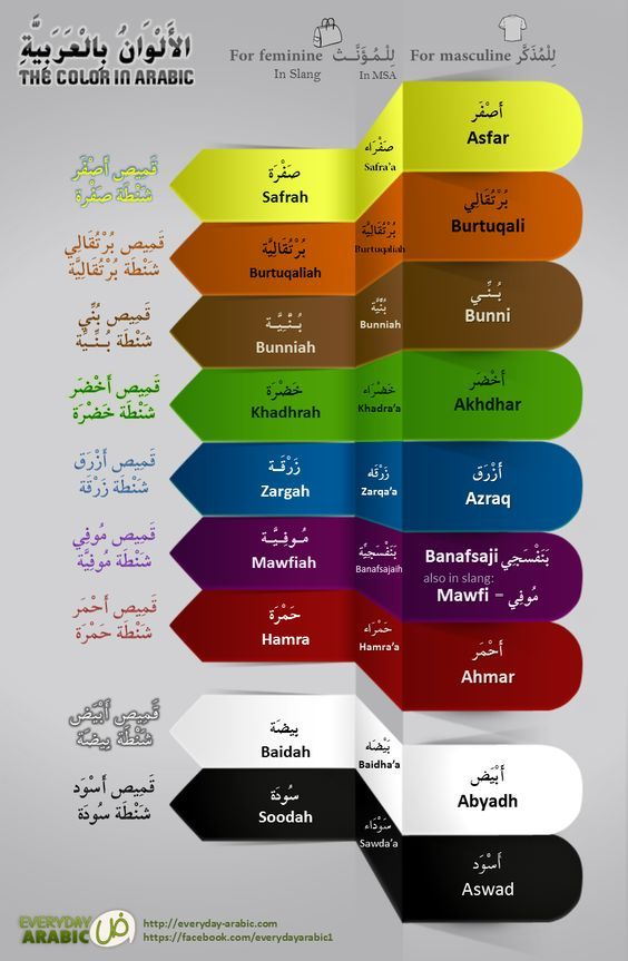 In Arabic, colors are treated differently than they are in English in two ways; the names of colors must agree with the gender of described nouns and