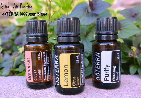 283 Best Wonderful Essential Oils Images On Pinterest