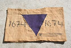 """""""""""The purple triangle was a concentration camp badge used by the Nazis to identify Bibelforscher (Bible Students), the German name for Jehovah's Witnesses in Nazi Germany. A small number of Adventists, Baptists and pacifists (less than one percent) were also identified by the badge. Nazism . . .  made the Bible Students the object of particularly intense persecution, including such extensive incarceration that a distinct badge was assigned to them."""""""