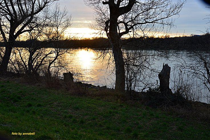 Dunaparti séta eredménye