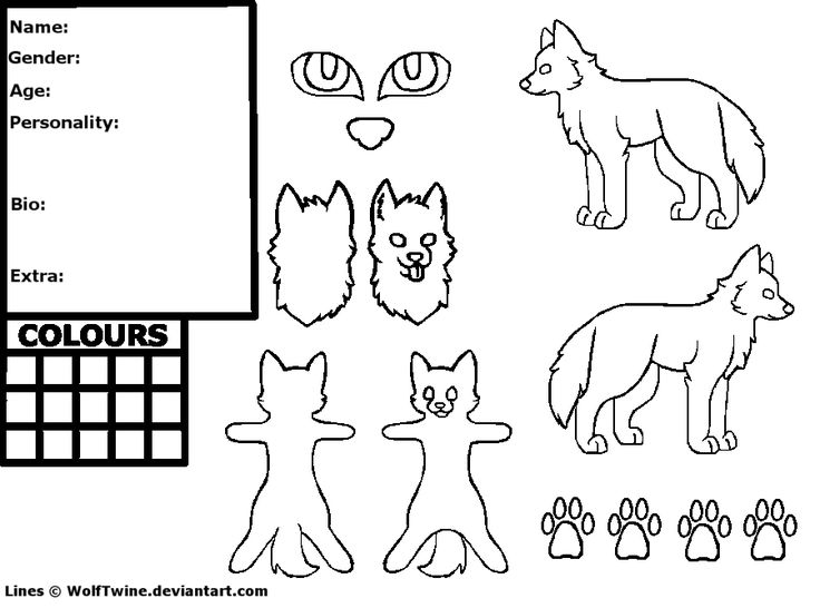 Fursona Reference Sheet Template  Free Basetemplateref Sheet By Fyairln Of Wolves  Sponk Fursona
