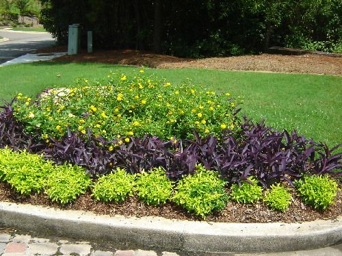 Shade Flower Beds