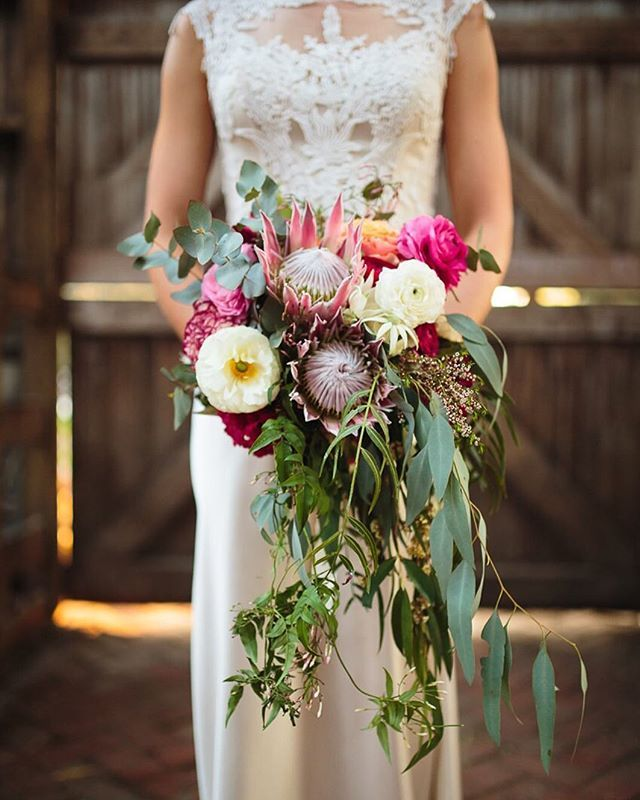 This bride's bouquet was full of the most beautiful native Australian blooms.... Photography ~ @pierrecurry_ // Wedding Dress ~ @ja_bridal // Bridal Boutique ~ @fairytalesbridalboutique // Bridal Shoes ~ Dianna Ferrari // Bridesmaid's Dresses ~ @modcloth & @asos // Bridesmaids Shoes ~ Bonbons // Groom's Attire ~ @oscarhunttailors // Accessories ~ @samanthawillsbridal // Hair ~ @sassybosshair // Ceremony Venue ~ Collingwood Children's Farm // Celebrant ~ Julia Doevan // Floral Design…