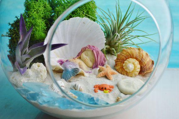 Mermaid Beach Terrarium Kit ~ 7″ Air Plant Terrarium Kit ~ Coastal Living Beach Decor ~ Shells ~ Sleeping Mermaid in Shell ~ Gift Idea