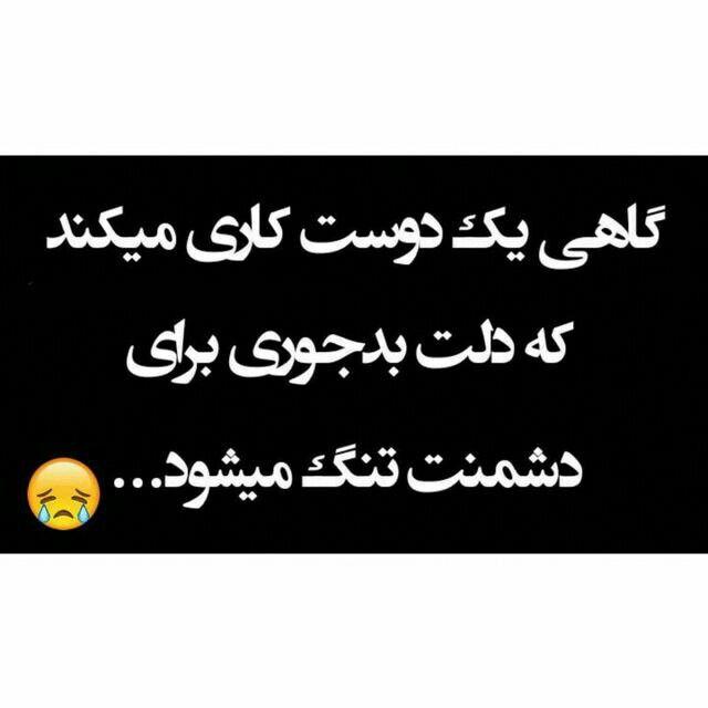 Pin On فارسی جوک
