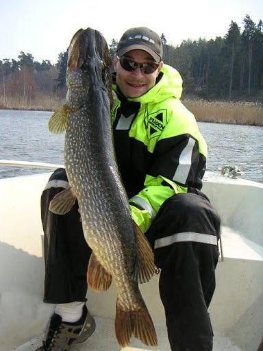 Fiskelycka vid en av våra stugor i Västerbotten med väldigt fina fiskemöjligheter. Hyr den till er fiskesemester hos oss på https://sverigestugor.eu För att komma till denna stuga - klicka vidare till bilden.