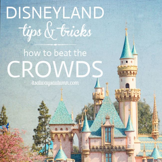it's always autumn - itsalwaysautumn - disneyland tips: beat the crowds