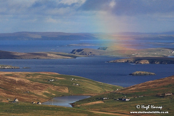 how to get from orkney islands to shetland islands